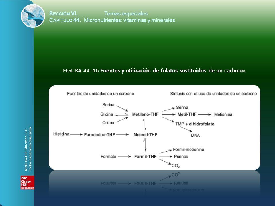 S ECCIÓN VI.Temas especiales C APÍTULO 44. Micronutrientes: vitaminas y minerales FIGURA 44–16 Fuentes y utilización de folatos sustituidos de un carb