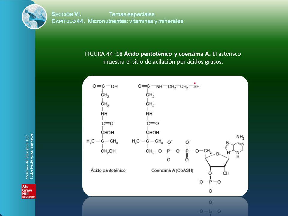 S ECCIÓN VI.Temas especiales C APÍTULO 44. Micronutrientes: vitaminas y minerales FIGURA 44–18 Ácido pantoténico y coenzima A. El asterisco muestra el