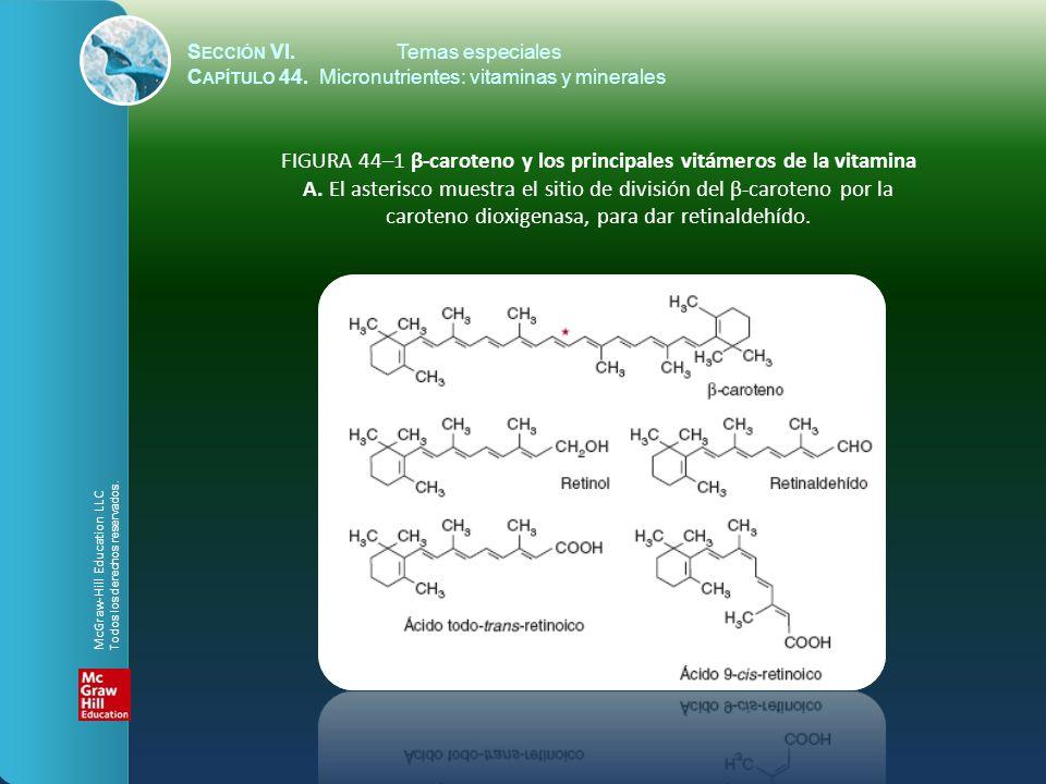 S ECCIÓN VI.Temas especiales C APÍTULO 44. Micronutrientes: vitaminas y minerales FIGURA 44–1 β-caroteno y los principales vitámeros de la vitamina A.