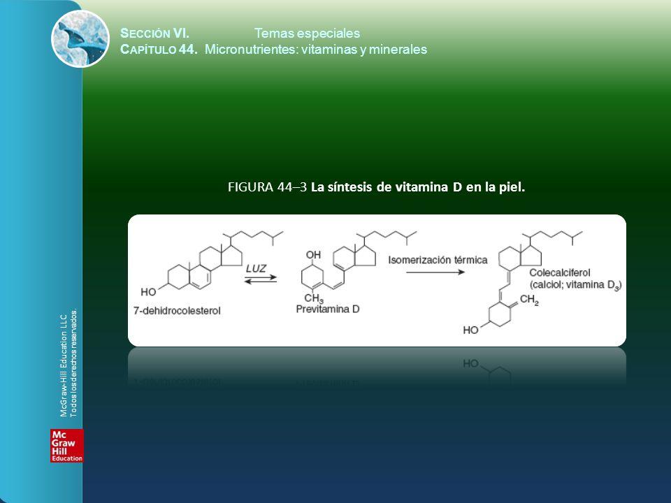 S ECCIÓN VI.Temas especiales C APÍTULO 44. Micronutrientes: vitaminas y minerales FIGURA 44–3 La síntesis de vitamina D en la piel. McGraw-Hill Educat