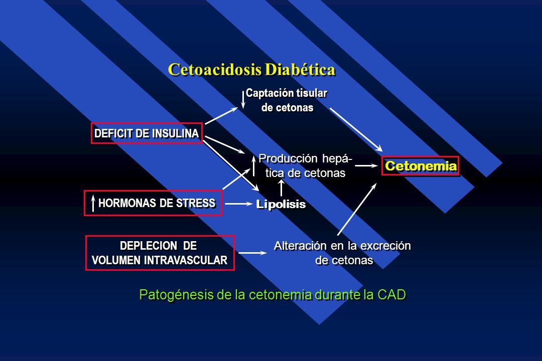 Deficiencia de Insulina (Secreción Disminuida, Resistencia o Ambas) Deficiencia de Insulina (Secreción Disminuida, Resistencia o Ambas) Hígado Glucone