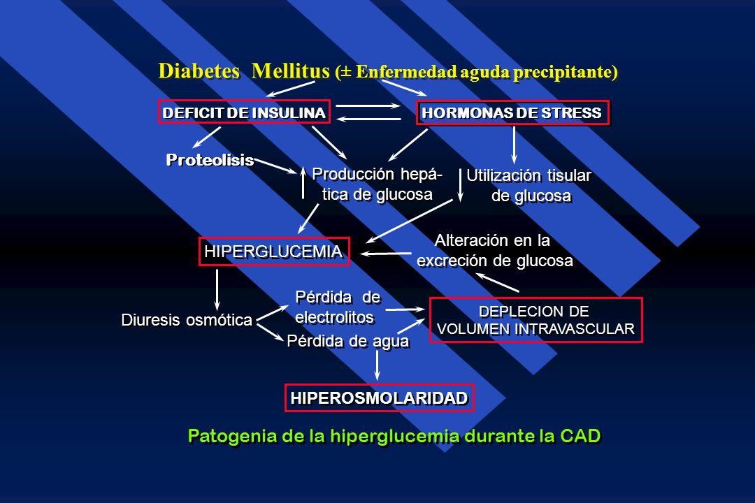 Cetoacidosis Diabética Patogénesis de la cetonemia durante la CAD Captación tisular de cetonas Captación tisular de cetonas Producción hepá- tica de c