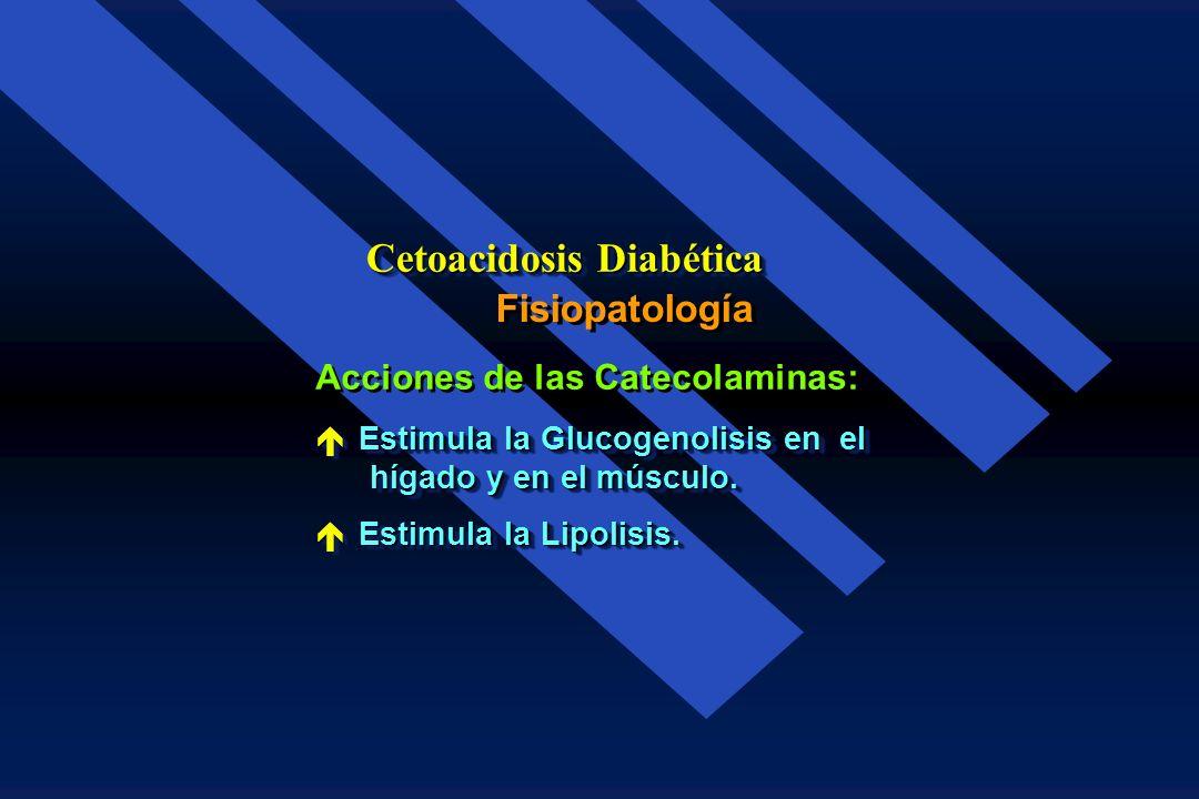Fisiopatología Cetoacidosis Diabética Acciones del Glucagon: é Estimula la Glucogenolisis en el hígado y en el músculo. hígado y en el músculo. é Esti