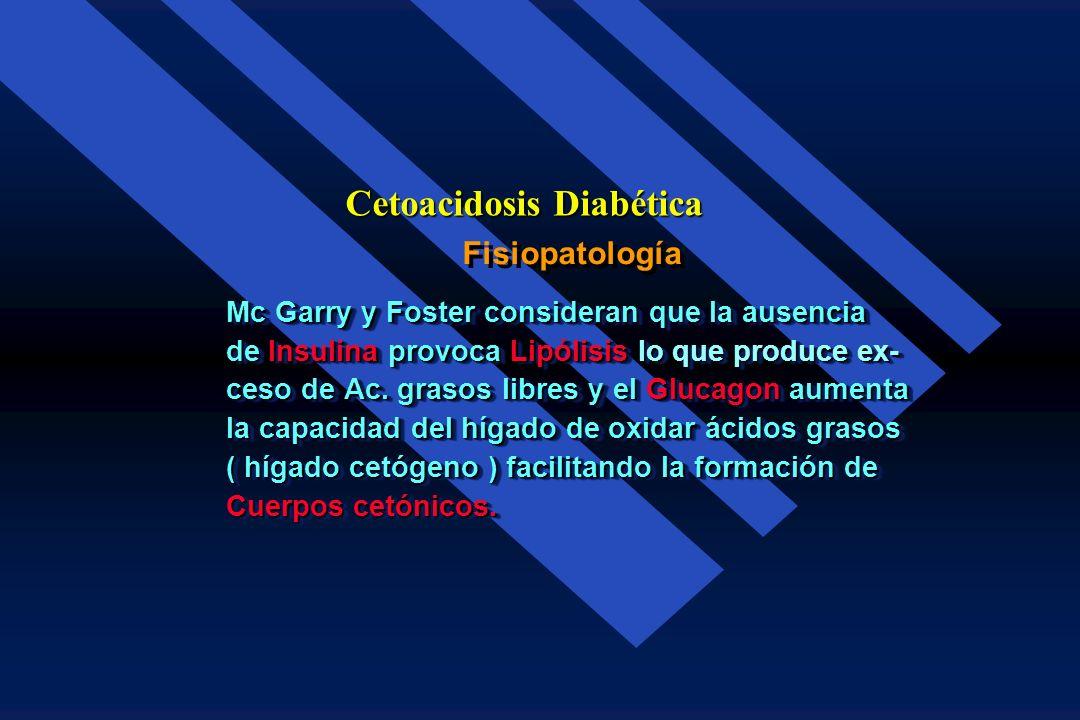 Fisiopatología Cetoacidosis Diabética Acciones de las Catecolaminas: é Estimula la Glucogenolisis en el hígado y en el músculo. hígado y en el músculo