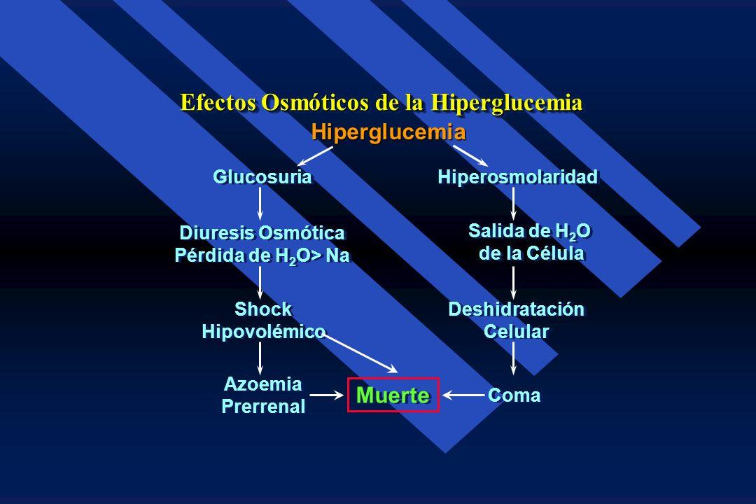 Las 2/3 de los enfermos con este síndrome no tienen historia de diabetes Las 2/3 de los enfermos con este síndrome no tienen historia de diabetes La 1
