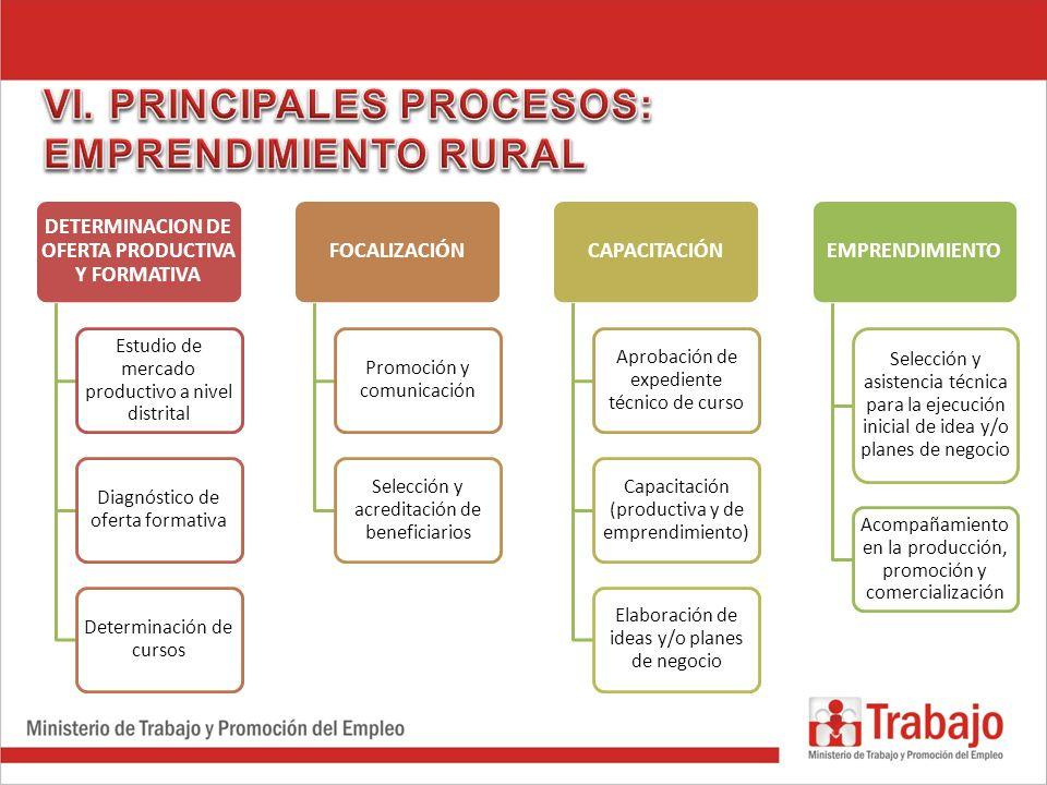DETERMINACION DE OFERTA PRODUCTIVA Y FORMATIVA Estudio de mercado productivo a nivel distrital Diagnóstico de oferta formativa Determinación de cursos