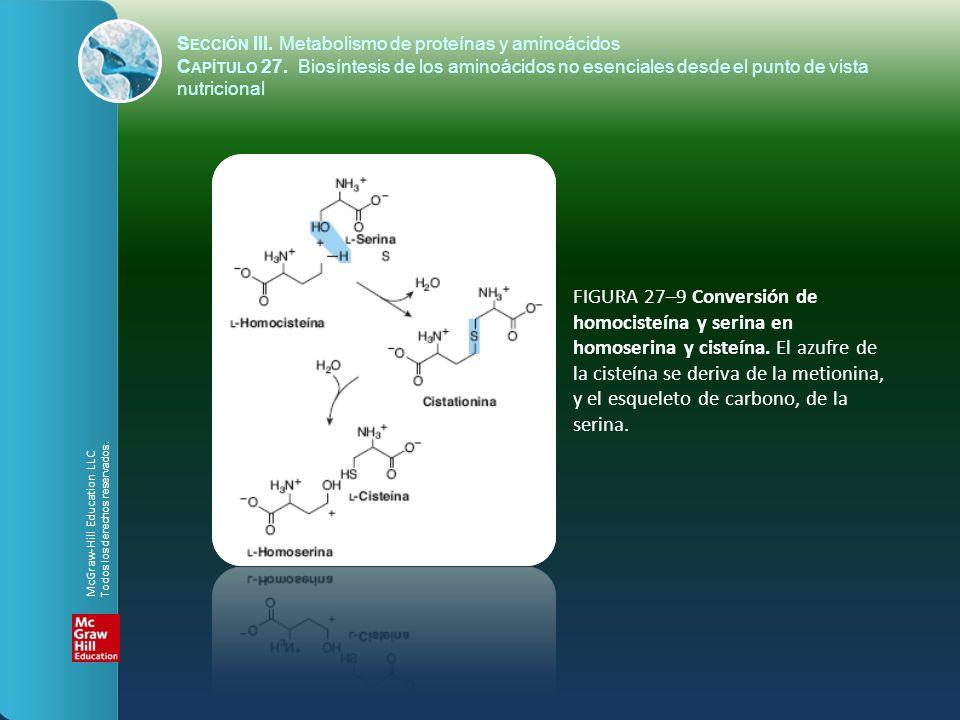 FIGURA 27–9 Conversión de homocisteína y serina en homoserina y cisteína. El azufre de la cisteína se deriva de la metionina, y el esqueleto de carbon