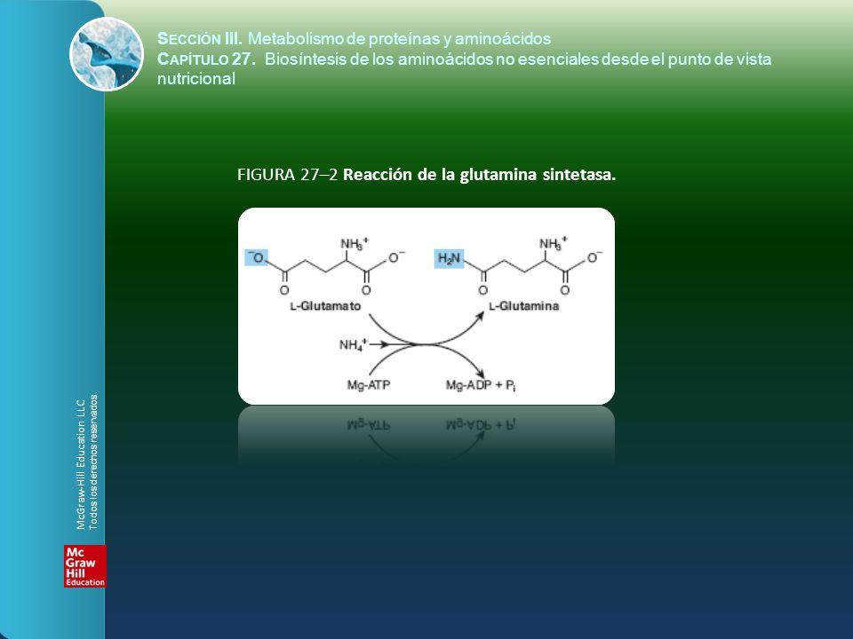 FIGURA 27–2 Reacción de la glutamina sintetasa. S ECCIÓN III. Metabolismo de proteínas y aminoácidos C APÍTULO 27. Biosíntesis de los aminoácidos no e
