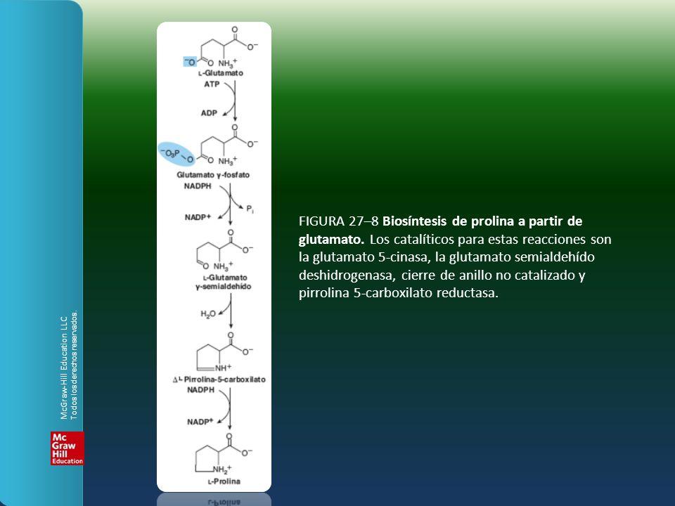 FIGURA 27–8 Biosíntesis de prolina a partir de glutamato. Los catalíticos para estas reacciones son la glutamato 5-cinasa, la glutamato semialdehído d