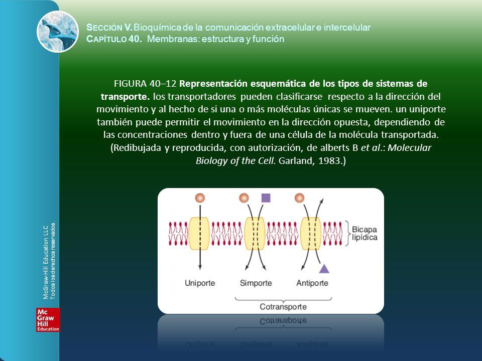 FIGURA 40–12 Representación esquemática de los tipos de sistemas de transporte. los transportadores pueden clasificarse respecto a la dirección del mo