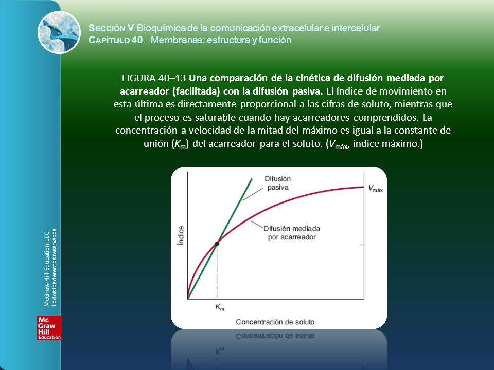 FIGURA 40–13 Una comparación de la cinética de difusión mediada por acarreador (facilitada) con la difusión pasiva. El índice de movimiento en esta úl