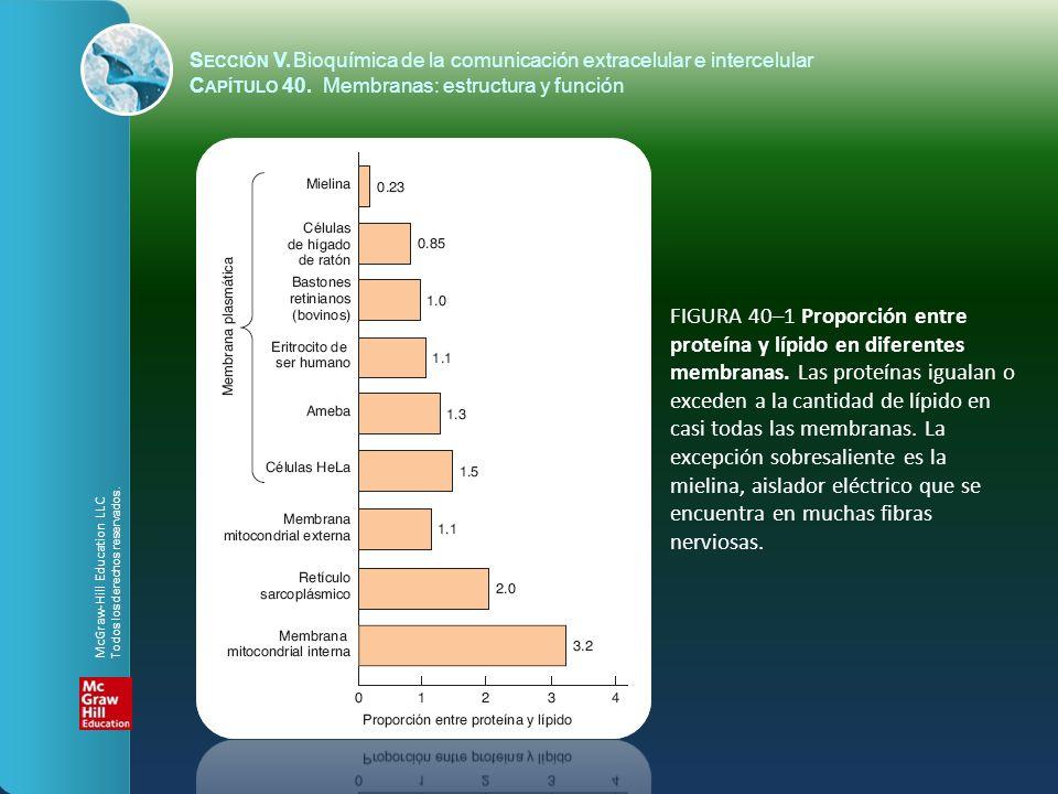 S ECCIÓN V.Bioquímica de la comunicación extracelular e intercelular C APÍTULO 40. Membranas: estructura y función FIGURA 40–1 Proporción entre proteí