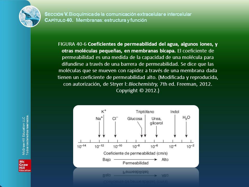 FIGURA 40-6 Coeficientes de permeabilidad del agua, algunos iones, y otras moléculas pequeñas, en membranas bicapa. El coeficiente de permeabilidad es