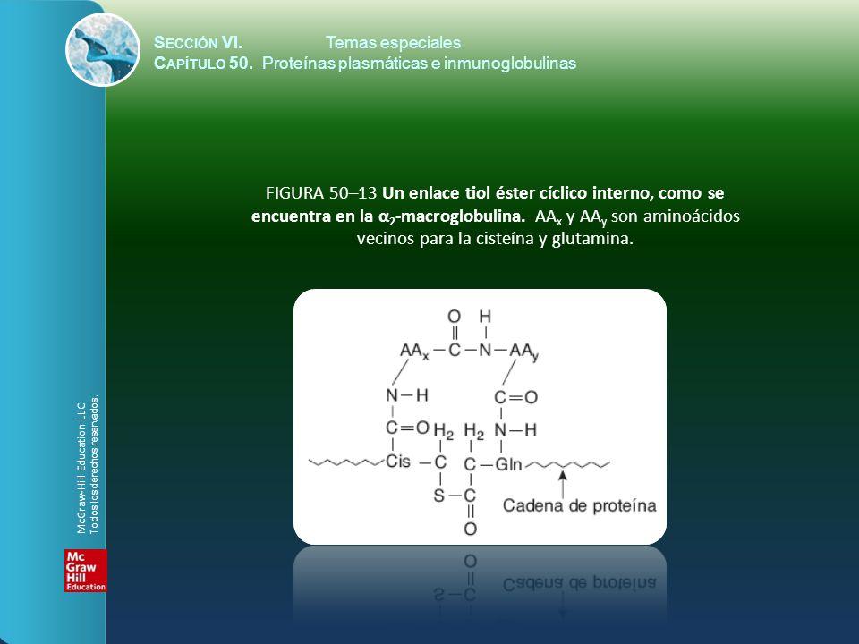 S ECCIÓN VI.Temas especiales C APÍTULO 50. Proteínas plasmáticas e inmunoglobulinas FIGURA 50–13 Un enlace tiol éster cíclico interno, como se encuent