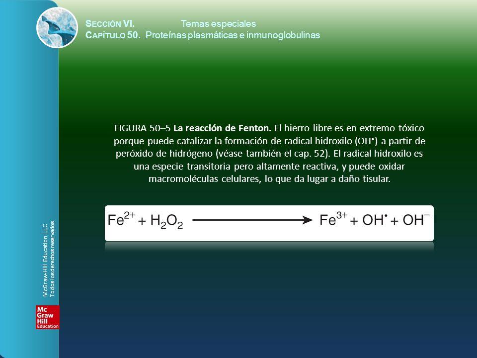 S ECCIÓN VI.Temas especiales C APÍTULO 50. Proteínas plasmáticas e inmunoglobulinas FIGURA 50–5 La reacción de Fenton. El hierro libre es en extremo t