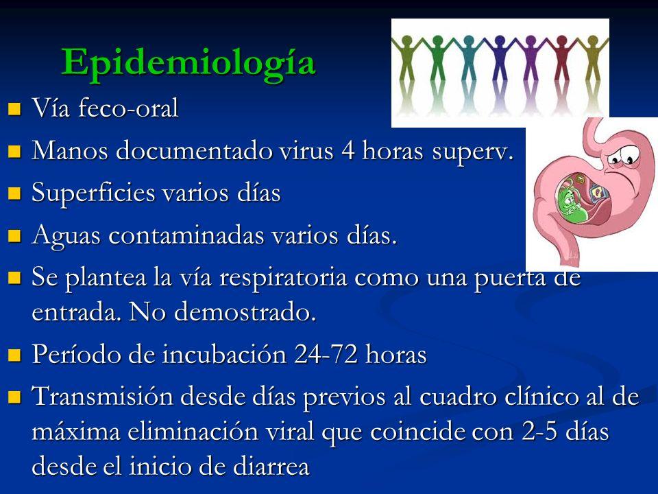 Epidemiología Vía feco-oral Vía feco-oral Manos documentado virus 4 horas superv. Manos documentado virus 4 horas superv. Superficies varios días Supe