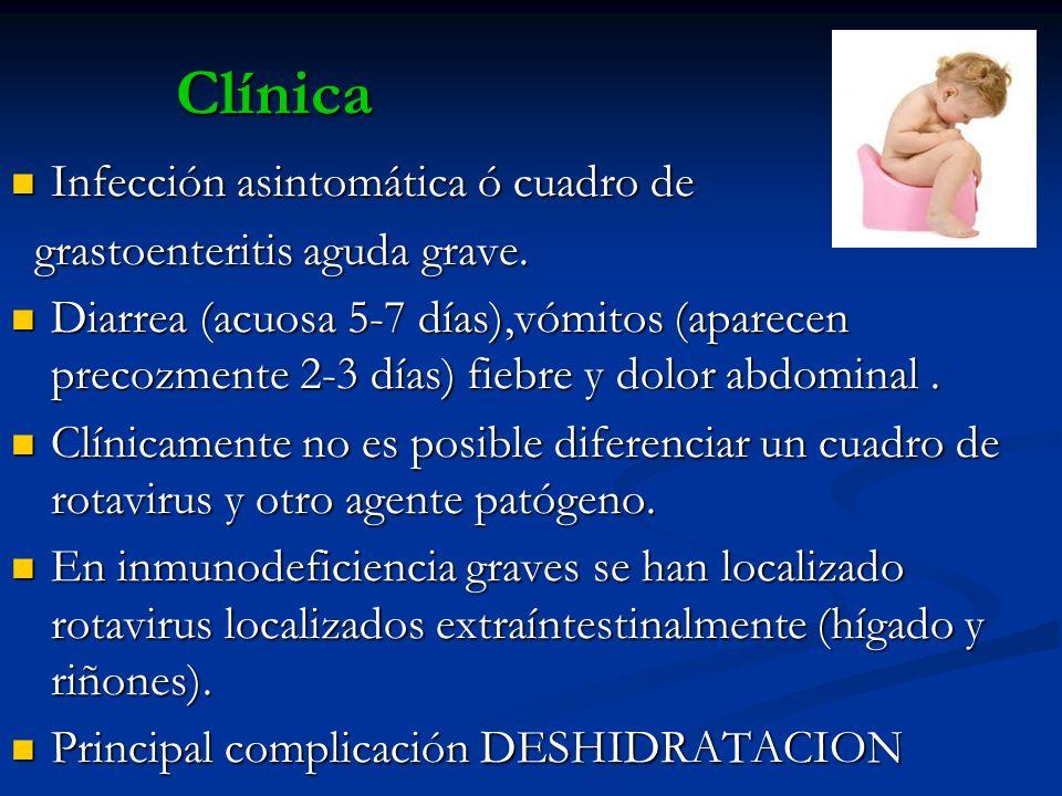 Clínica Infección asintomática ó cuadro de Infección asintomática ó cuadro de grastoenteritis aguda grave. grastoenteritis aguda grave. Diarrea (acuos