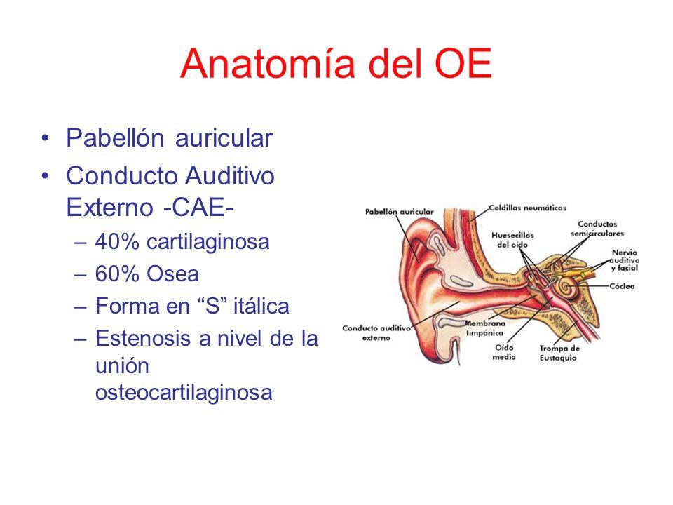Anatomía del OE Pabellón auricular Conducto Auditivo Externo -CAE- –40% cartilaginosa –60% Osea –Forma en S itálica –Estenosis a nivel de la unión ost