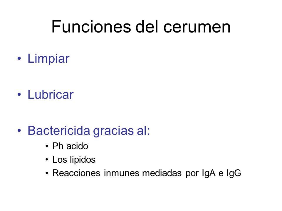 Funciones del cerumen Limpiar Lubricar Bactericida gracias al: Ph acido Los lipidos Reacciones inmunes mediadas por IgA e IgG