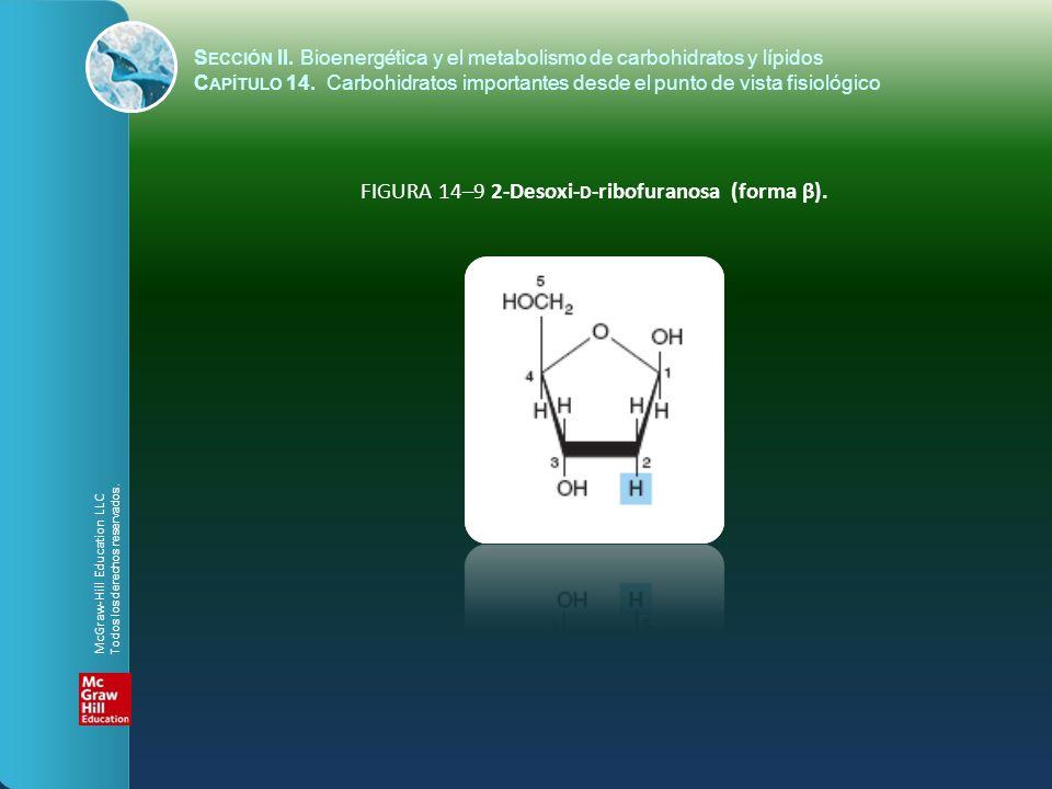 FIGURA 14–9 2-Desoxi- D -ribofuranosa (forma β). McGraw-Hill Education LLC Todos los derechos reservados. S ECCIÓN II. Bioenergética y el metabolismo