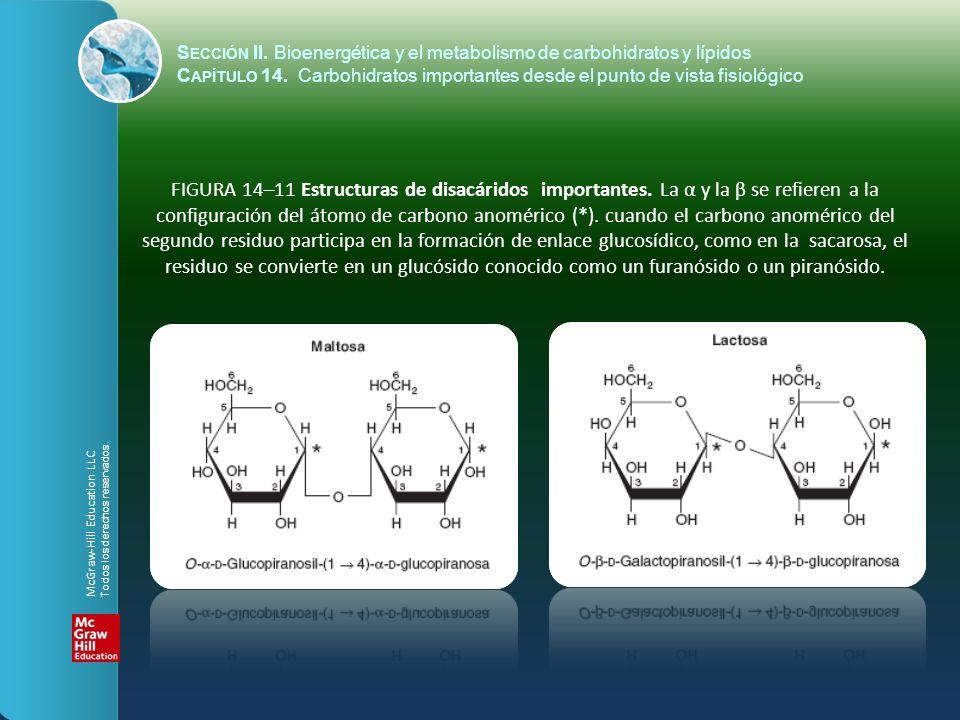 FIGURA 14–11 Estructuras de disacáridos importantes. La α y la β se refieren a la configuración del átomo de carbono anomérico (*). cuando el carbono