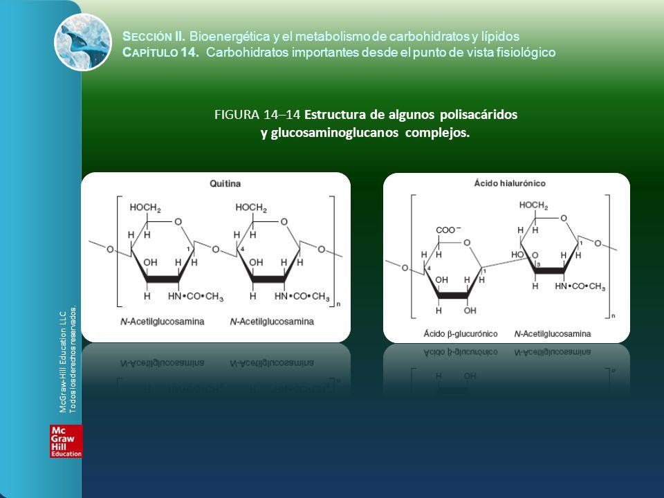 FIGURA 14–14 Estructura de algunos polisacáridos y glucosaminoglucanos complejos. S ECCIÓN II. Bioenergética y el metabolismo de carbohidratos y lípid