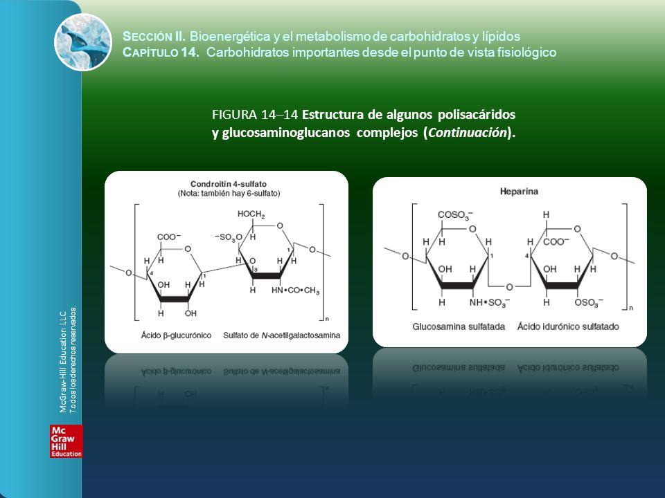 FIGURA 14–14 Estructura de algunos polisacáridos y glucosaminoglucanos complejos (Continuación). S ECCIÓN II. Bioenergética y el metabolismo de carboh