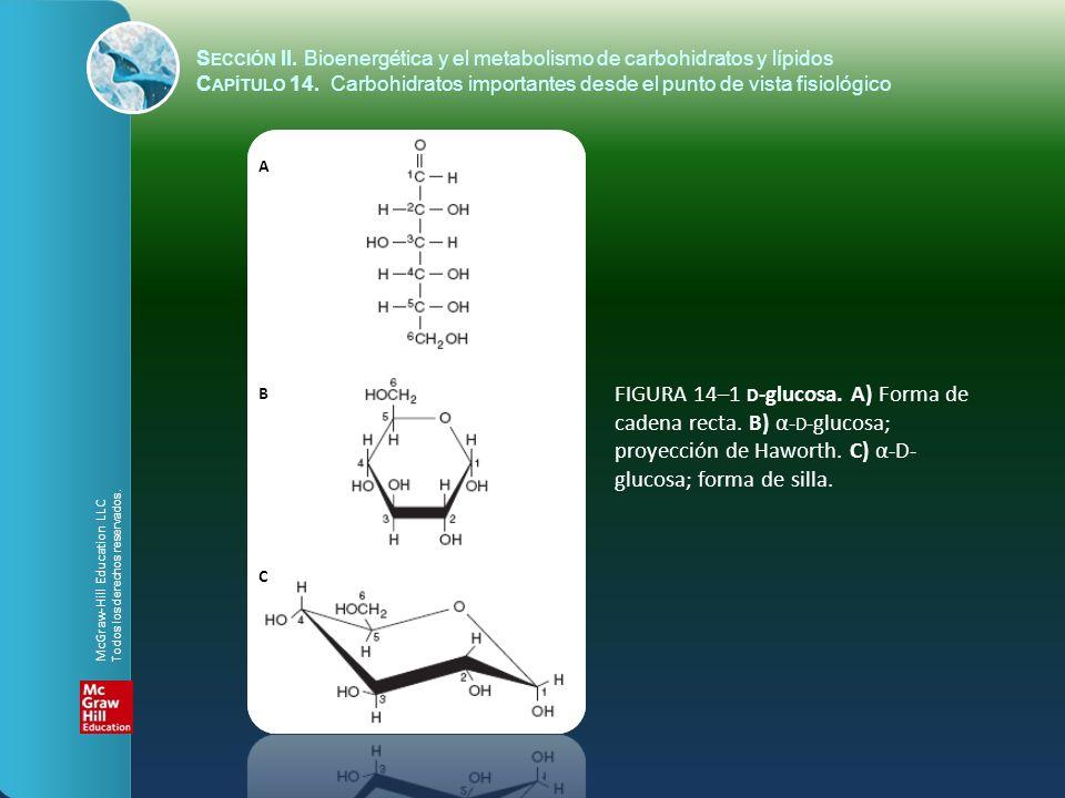 S ECCIÓN II. Bioenergética y el metabolismo de carbohidratos y lípidos C APÍTULO 14. Carbohidratos importantes desde el punto de vista fisiológico A B