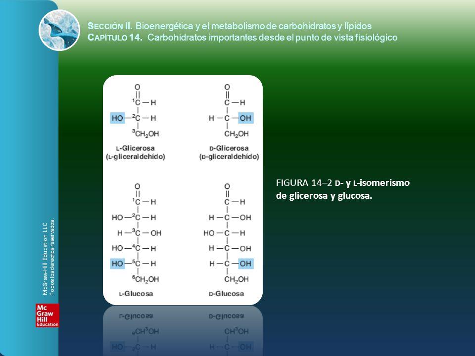 FIGURA 14–2 D - y L -isomerismo de glicerosa y glucosa. S ECCIÓN II. Bioenergética y el metabolismo de carbohidratos y lípidos C APÍTULO 14. Carbohidr