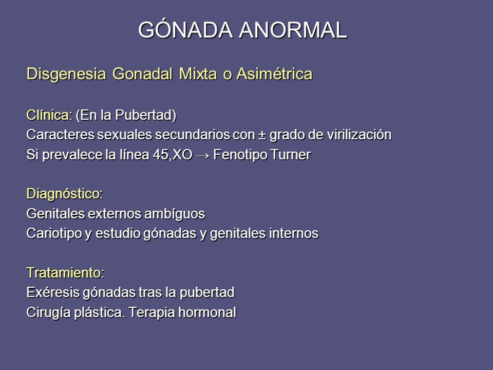 Disgenesia Gonadal Mixta o Asimétrica Clínica: (En la Pubertad) Caracteres sexuales secundarios con ± grado de virilización Si prevalece la línea 45,X