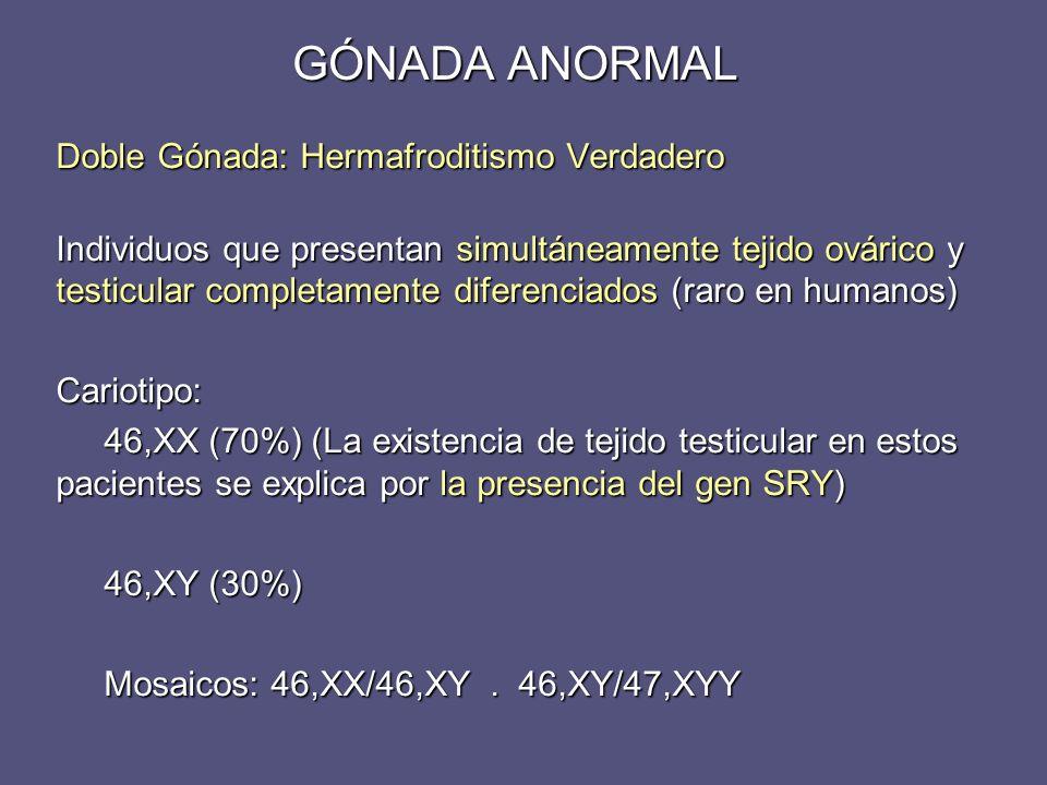 Doble Gónada: Hermafroditismo Verdadero Individuos que presentan simultáneamente tejido ovárico y testicular completamente diferenciados (raro en huma