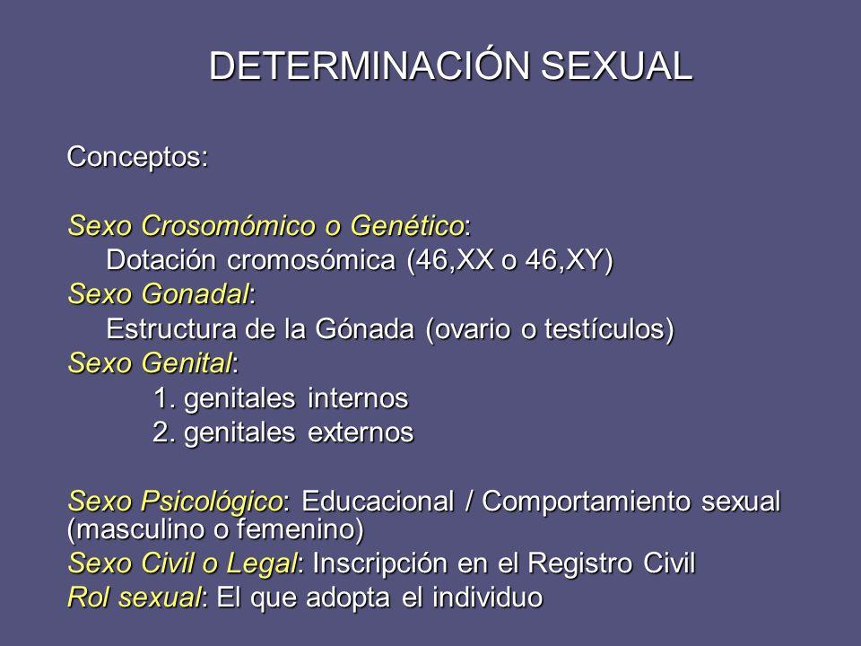 DIFERENCIACIÓN SEXUAL Es un proceso secuencial y organizado El sexo cromosómico o genético determina el sexo gonadal, que a su vez, es responsable del desarrollo del aparato genital femenino o masculino (sexo genital) que condicionará el sexo psicológico o comportamiento sexual del individuo.
