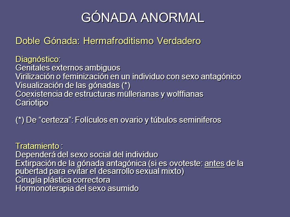 Doble Gónada: Hermafroditismo Verdadero Diagnóstico: Genitales externos ambiguos Virilización o feminización en un individuo con sexo antagónico Visua
