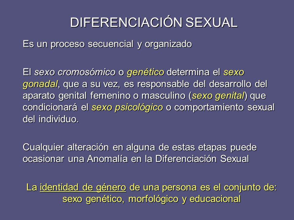 DIFERENCIACIÓN SEXUAL La tendencia en el desarrollo del aparato genital, es hacia una feminización somática, a menos que sea interferido por factores masculinizantes La tendencia en el desarrollo del aparato genital, es hacia una feminización somática, a menos que sea interferido por factores masculinizantes La presencia del gen SRY (habitualmente en el cromosoma Y) pone en marcha factores determinantes del testículo (TDF) que desarrollarán la gónada indiferenciada a testículo La presencia del gen SRY (habitualmente en el cromosoma Y) pone en marcha factores determinantes del testículo (TDF) que desarrollarán la gónada indiferenciada a testículo El gen SRY puede ser transferido a cromosomas X, durante la fecundación, y explicar la masculinización en sujetos XX (inversión sexual) El gen SRY puede ser transferido a cromosomas X, durante la fecundación, y explicar la masculinización en sujetos XX (inversión sexual) Mutaciones en el gen SRY explican ciertas formas de feminización en sujetos XY SRY Centrómero