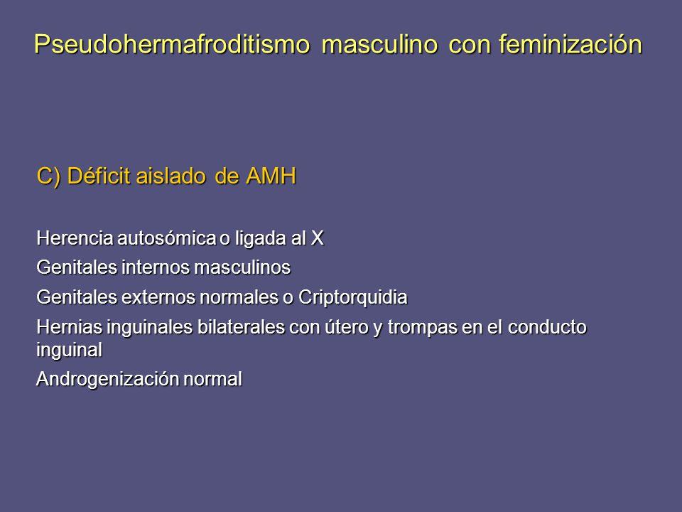 C) Déficit aislado de AMH Herencia autosómica o ligada al X Genitales internos masculinos Genitales externos normales o Criptorquidia Hernias inguinal