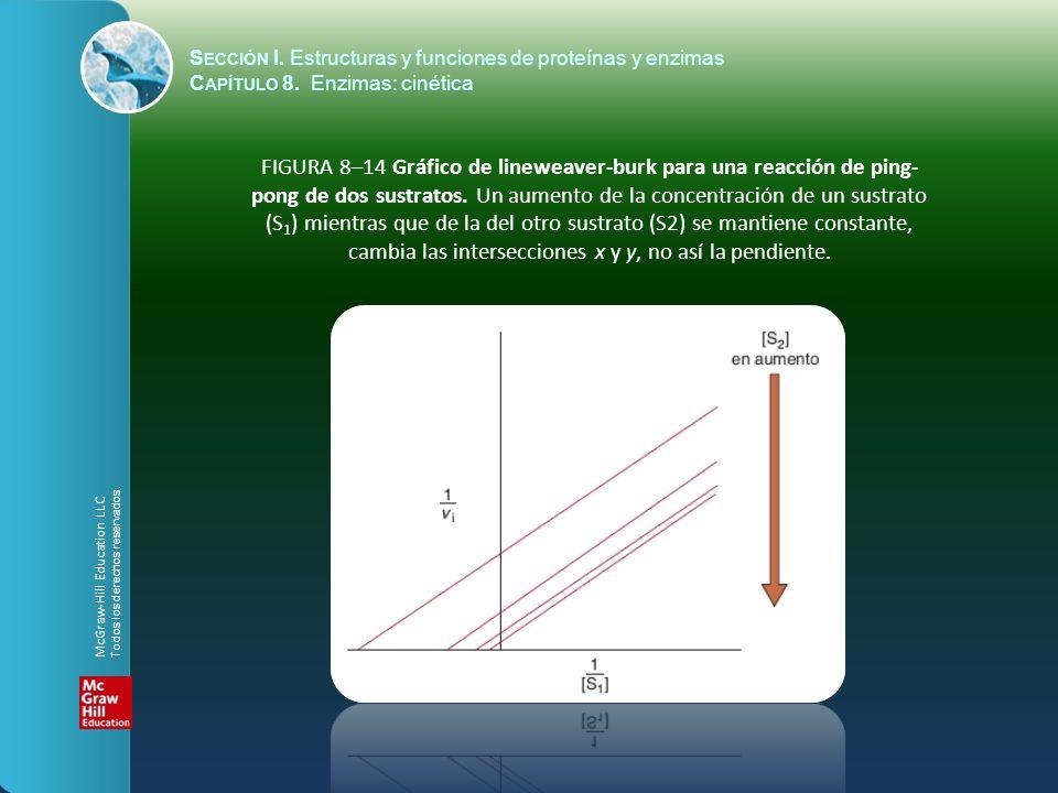 FIGURA 8–14 Gráfico de lineweaver-burk para una reacción de ping- pong de dos sustratos. Un aumento de la concentración de un sustrato (S 1 ) mientras