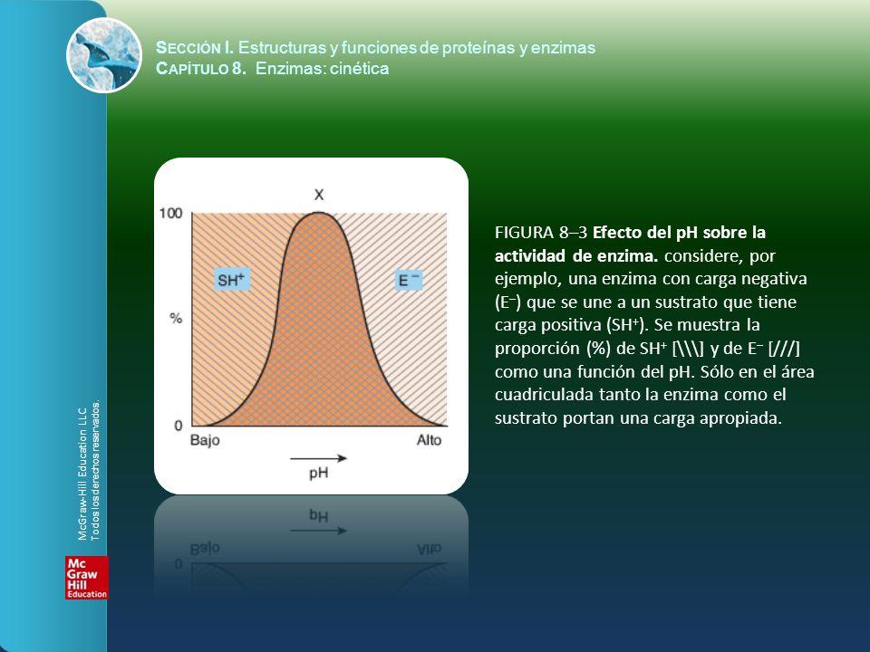 FIGURA 8–3 Efecto del pH sobre la actividad de enzima. considere, por ejemplo, una enzima con carga negativa (E – ) que se une a un sustrato que tiene