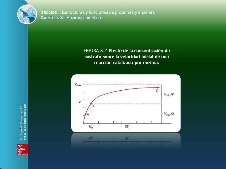 FIGURA 8–4 Efecto de la concentración de sustrato sobre la velocidad inicial de una reacción catalizada por enzima. S ECCIÓN I. Estructuras y funcione