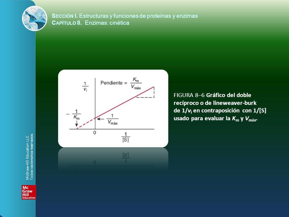 FIGURA 8–6 Gráfico del doble recíproco o de lineweaver-burk de 1/v i en contraposición con 1/[S] usado para evaluar la K m y V máx. S ECCIÓN I. Estruc