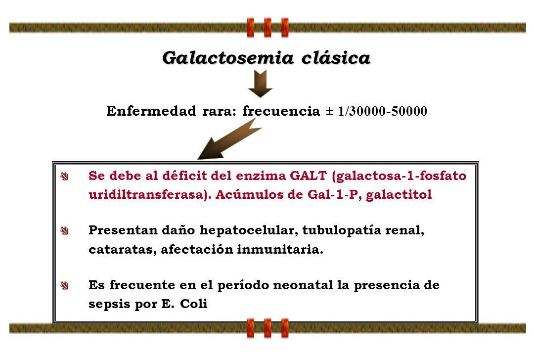 Se debe al déficit del enzima GALT (galactosa-1-fosfato uridiltransferasa). Acúmulos de Gal-1-P, galactitol Presentan daño hepatocelular, tubulopatía