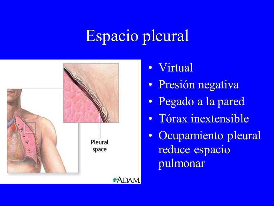 Espacio pleural Virtual Presión negativa Pegado a la pared Tórax inextensible Ocupamiento pleural reduce espacio pulmonar