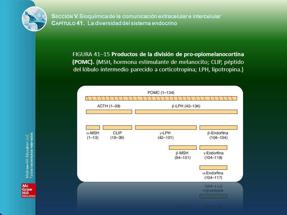 S ECCIÓN V.Bioquímica de la comunicación extracelular e intercelular C APÍTULO 41. La diversidad del sistema endocrino FIGURA 41–15 Productos de la di