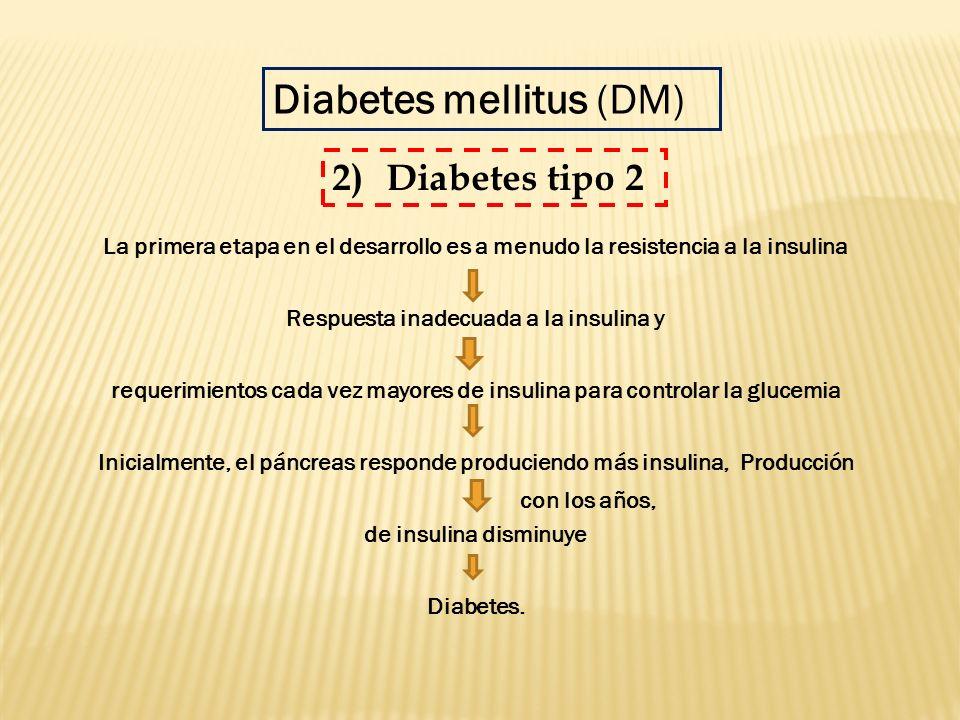 La primera etapa en el desarrollo es a menudo la resistencia a la insulina Respuesta inadecuada a la insulina y requerimientos cada vez mayores de ins