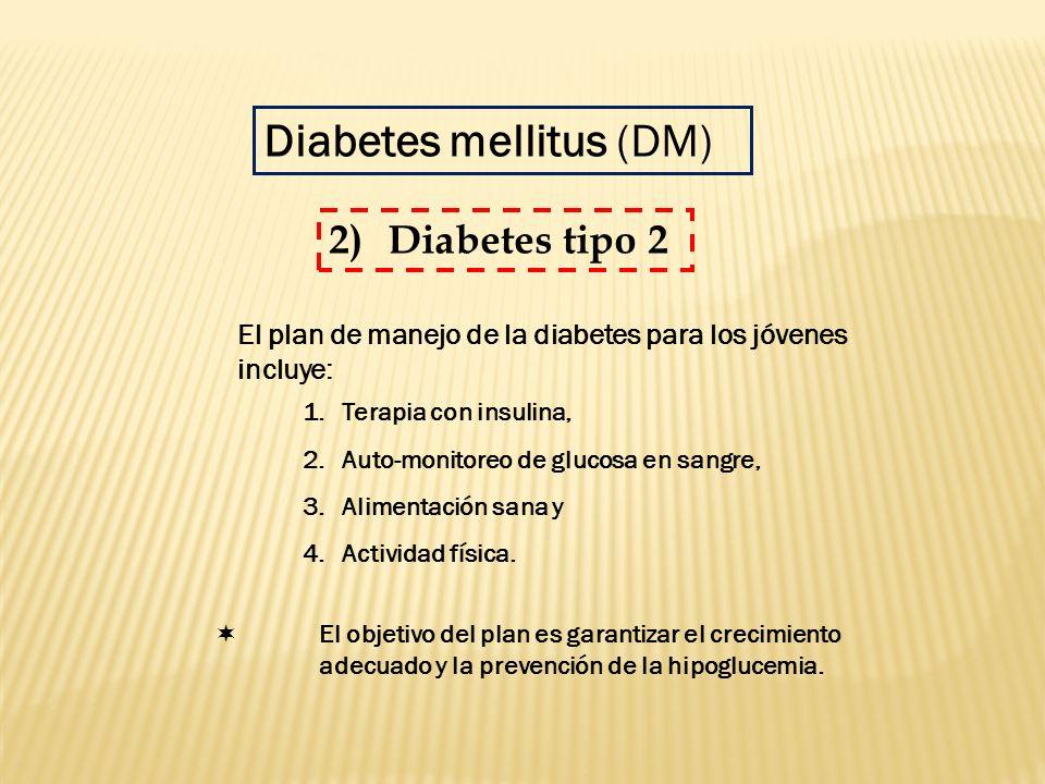 El plan de manejo de la diabetes para los jóvenes incluye: 1.Terapia con insulina, 2.Auto-monitoreo de glucosa en sangre, 3.Alimentación sana y 4.Acti