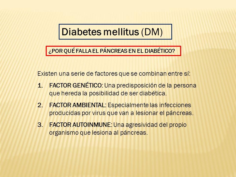 Existen una serie de factores que se combinan entre sí: 1.FACTOR GENÉTICO: Una predisposición de la persona que hereda la posibilidad de ser diabética