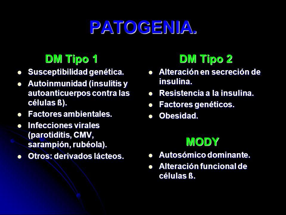 PATOGENIA. DM Tipo 1 DM Tipo 1 Susceptibilidad genética. Susceptibilidad genética. Autoinmunidad (insulitis y autoanticuerpos contra las células ß). A
