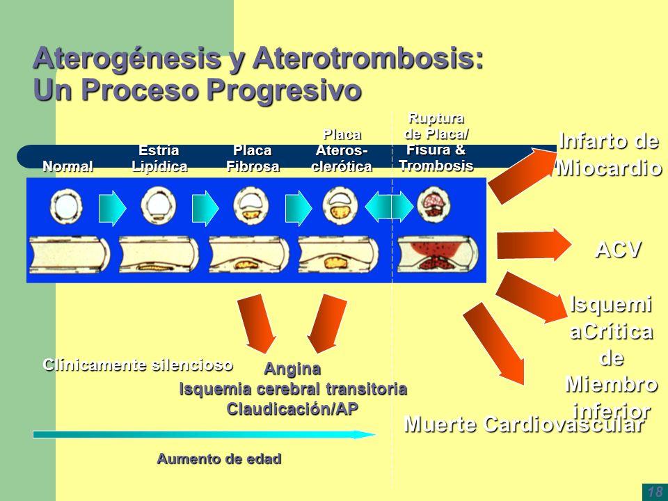 Aterogénesis y Aterotrombosis: Un Proceso Progresivo Normal EstríaLipídica Placa Fibrosa Placa Ateros- clerótica Ruptura de Placa/ Fisura & Trombosis
