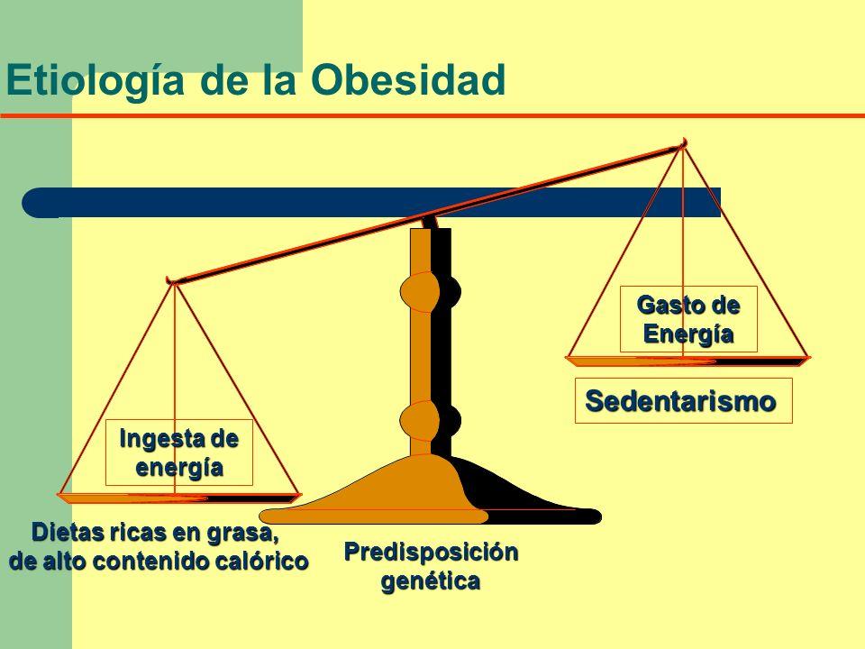 Ingesta de energía Gasto de Energía Dietas ricas en grasa, de alto contenido calórico Predisposicióngenética Sedentarismo Etiología de la Obesidad