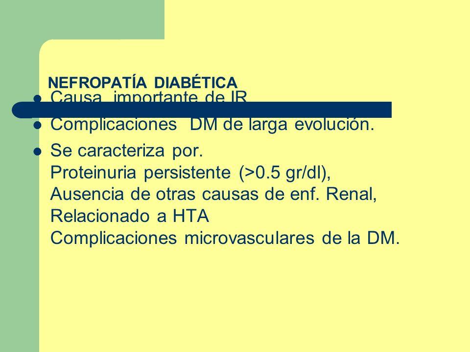 NEFROPATÍA DIABÉTICA Causa importante de IR Complicaciones DM de larga evolución. Se caracteriza por. Proteinuria persistente (>0.5 gr/dl), Ausencia d
