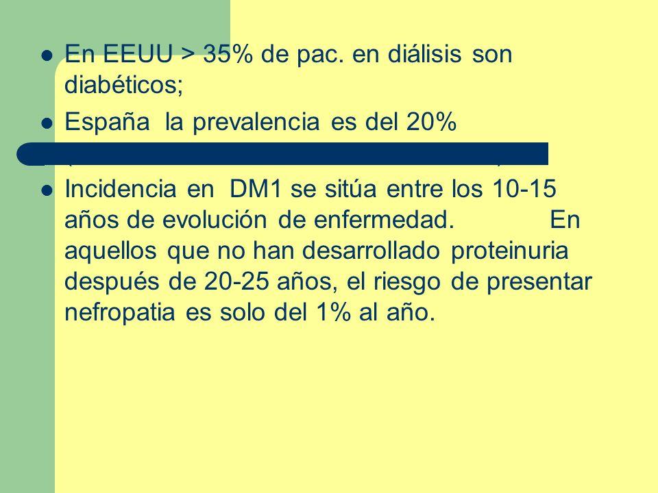 En EEUU > 35% de pac. en diálisis son diabéticos; España la prevalencia es del 20% ( siendo en un 80% de los casos DM2). Incidencia en DM1 se sitúa en